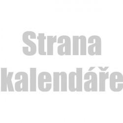 Strana kalendáře A3 (barevné pozadí)