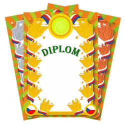Diplom s ohodnocením